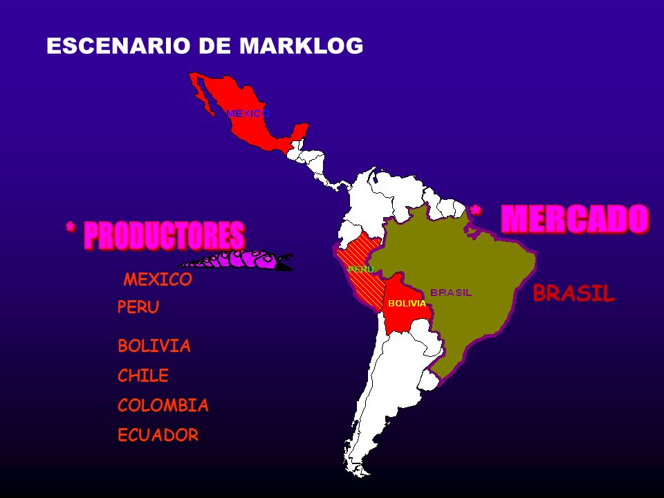 BOLIVIA CHILE COLOMBIA ECUADOR BRASIL MEXICO PERU ESCENARIO DE MARKLOG