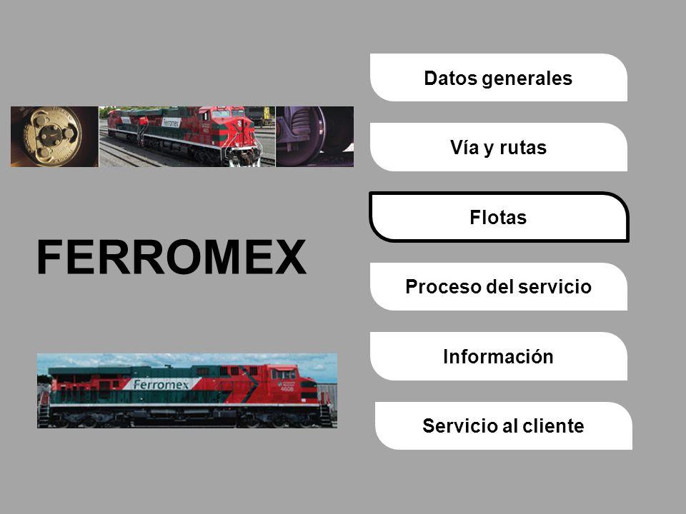 Proceso del servicioVía y rutasDatos generalesFlotasInformaciónServicio al cliente FERROMEX Flotas