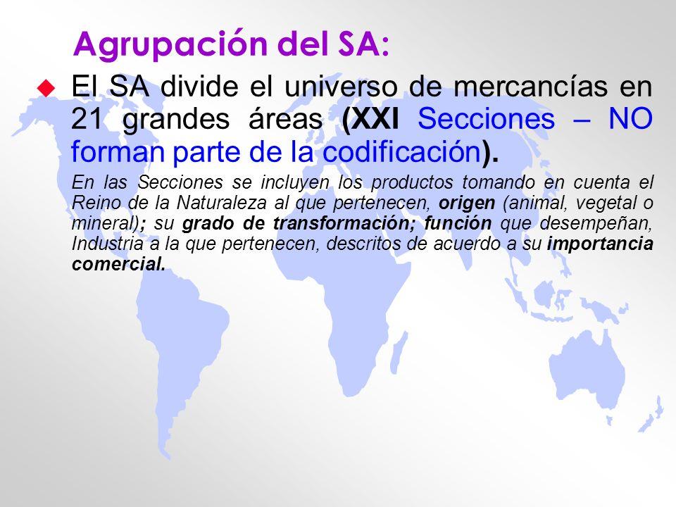 Agrupación del SA: u El SA divide el universo de mercancías en 21 grandes áreas (XXI Secciones – NO forman parte de la codificación). En las Secciones