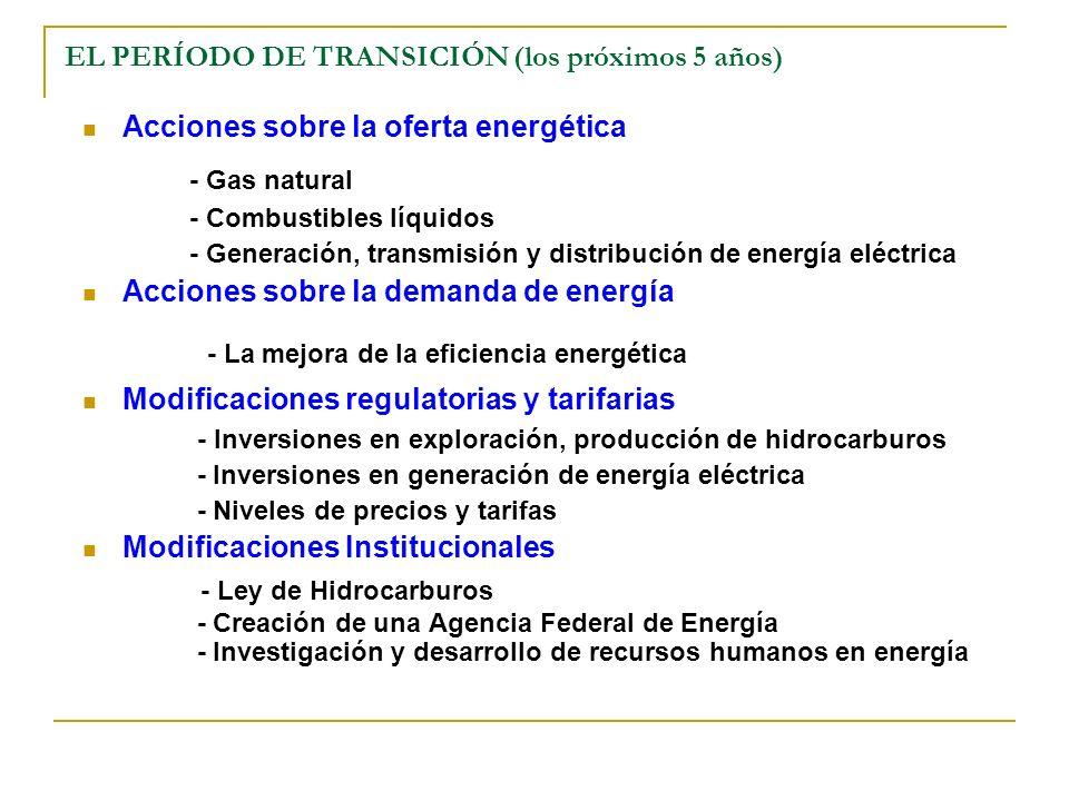 EL PERÍODO DE TRANSICIÓN (los próximos 5 años) Acciones sobre la oferta energética - Gas natural - Combustibles líquidos - Generación, transmisión y distribución de energía eléctrica Acciones sobre la demanda de energía - La mejora de la eficiencia energética Modificaciones regulatorias y tarifarias - Inversiones en exploración, producción de hidrocarburos - Inversiones en generación de energía eléctrica - Niveles de precios y tarifas Modificaciones Institucionales - Ley de Hidrocarburos - Creación de una Agencia Federal de Energía - Investigación y desarrollo de recursos humanos en energía