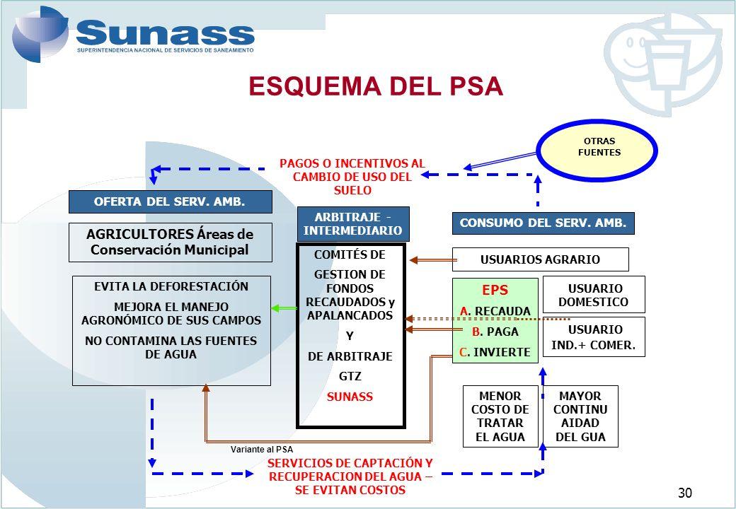 30 ESQUEMA DEL PSA AGRICULTORES Áreas de Conservación Municipal USUARIOS AGRARIO MENOR COSTO DE TRATAR EL AGUA OFERTA DEL SERV.