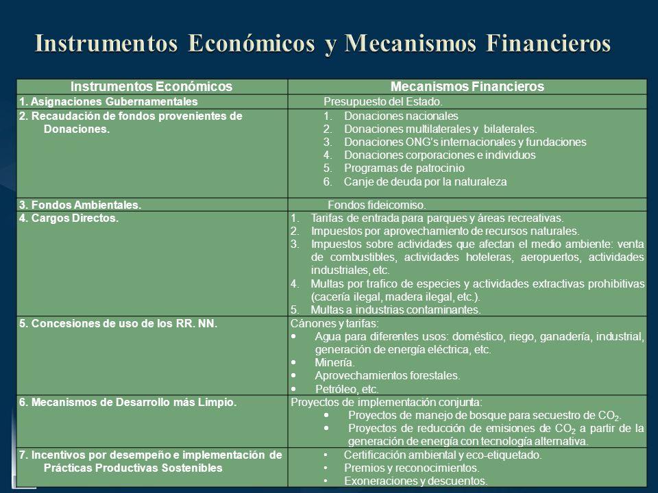 Instrumentos EconómicosMecanismos Financieros 1. Asignaciones GubernamentalesPresupuesto del Estado. 2. Recaudación de fondos provenientes de Donacion
