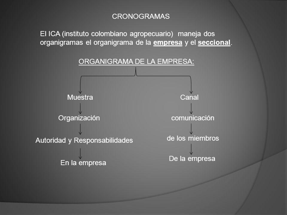 CRONOGRAMAS El ICA (instituto colombiano agropecuario) maneja dos organigramas el organigrama de la empresa y el seccional. ORGANIGRAMA DE LA EMPRESA: