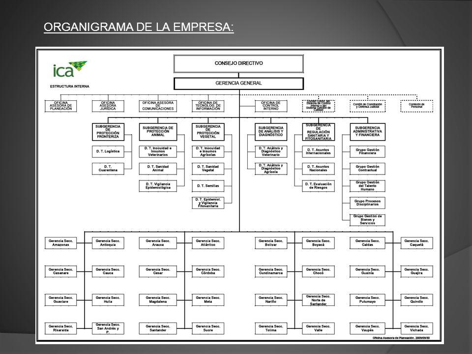 ORGANIGRAMA DE LA EMPRESA:
