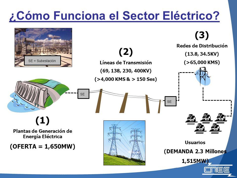 (2) Líneas de Transmisión (69, 138, 230, 400KV) (>4,000 KMS & > 150 Ses) Usuarios (DEMANDA 2.3 Millones 1,515MW) (1) Plantas de Generación de Energía Eléctrica (OFERTA = 1,650MW) ¿Cómo Funciona el Sector Eléctrico.