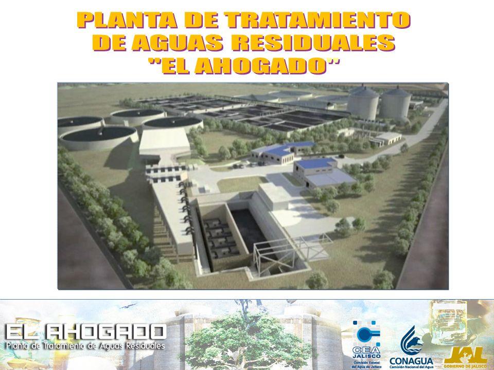 Generación de energía usando el biogás producido.