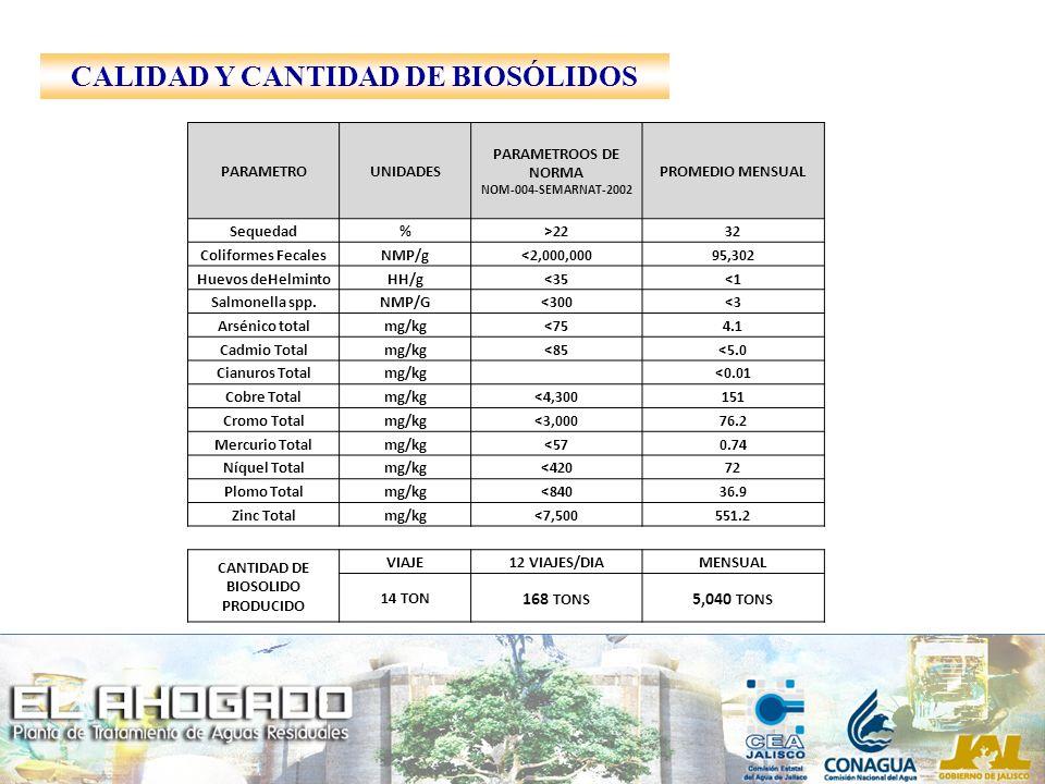 CALIDAD Y CANTIDAD DE BIOSÓLIDOS PARAMETROUNIDADES PARAMETROOS DE NORMA NOM-004-SEMARNAT-2002 PROMEDIO MENSUAL Sequedad%>2232 Coliformes FecalesNMP/g<