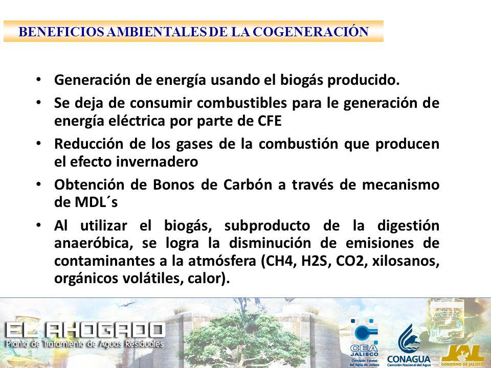 Generación de energía usando el biogás producido. Se deja de consumir combustibles para le generación de energía eléctrica por parte de CFE Reducción