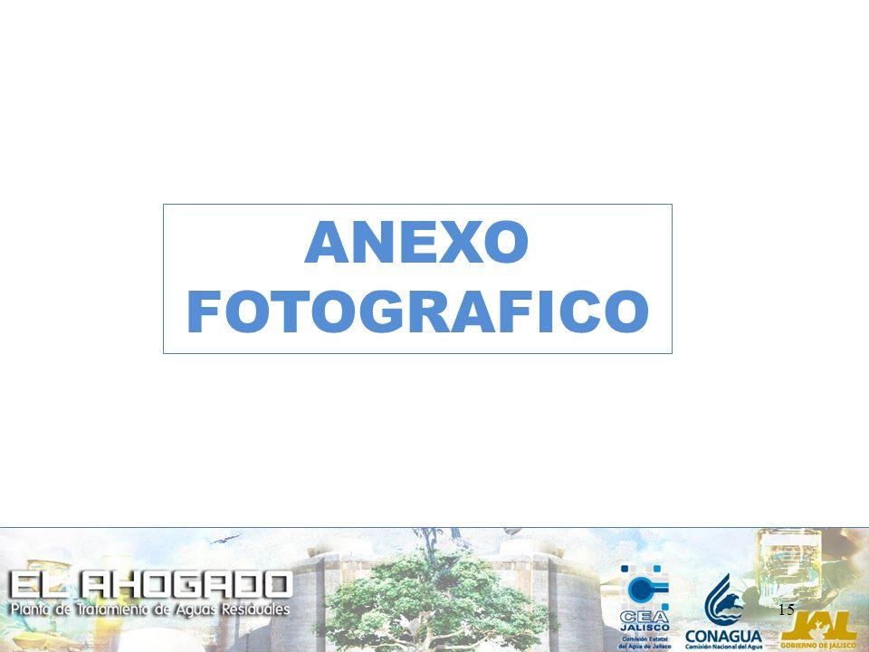 15 ANEXO FOTOGRAFICO