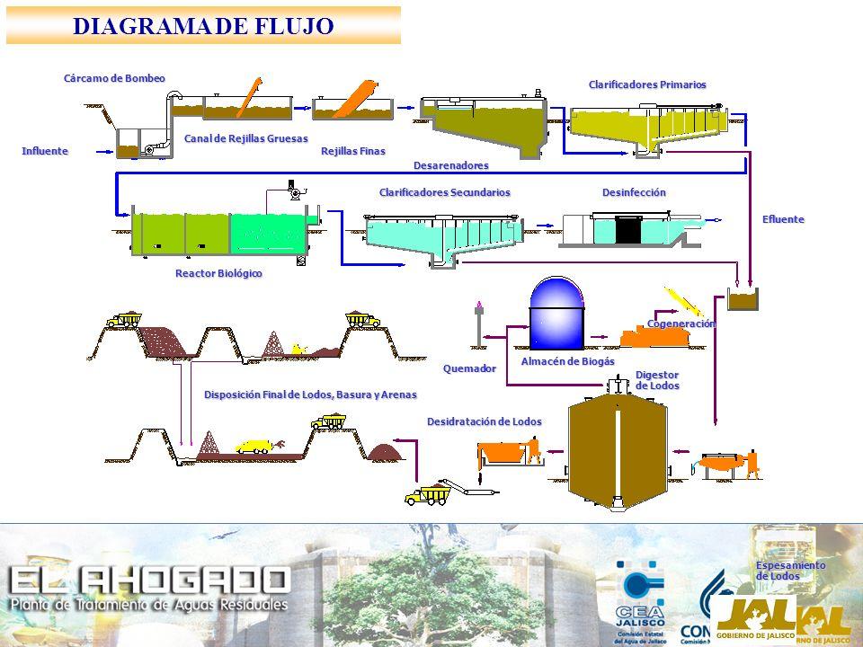 Canal de Rejillas Gruesas Cárcamo de Bombeo Rejillas Finas Desarenadores Clarificadores Primarios Reactor Biológico Clarificadores Secundarios Desinfe