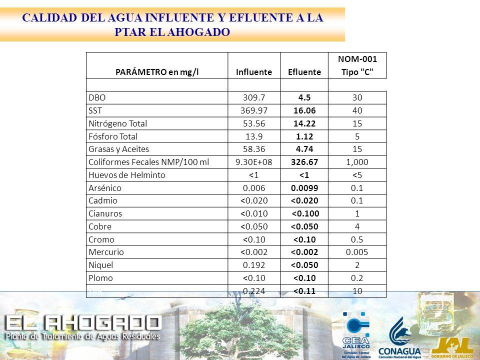 PARÁMETRO en mg/lInfluenteEfluente NOM-001 Tipo