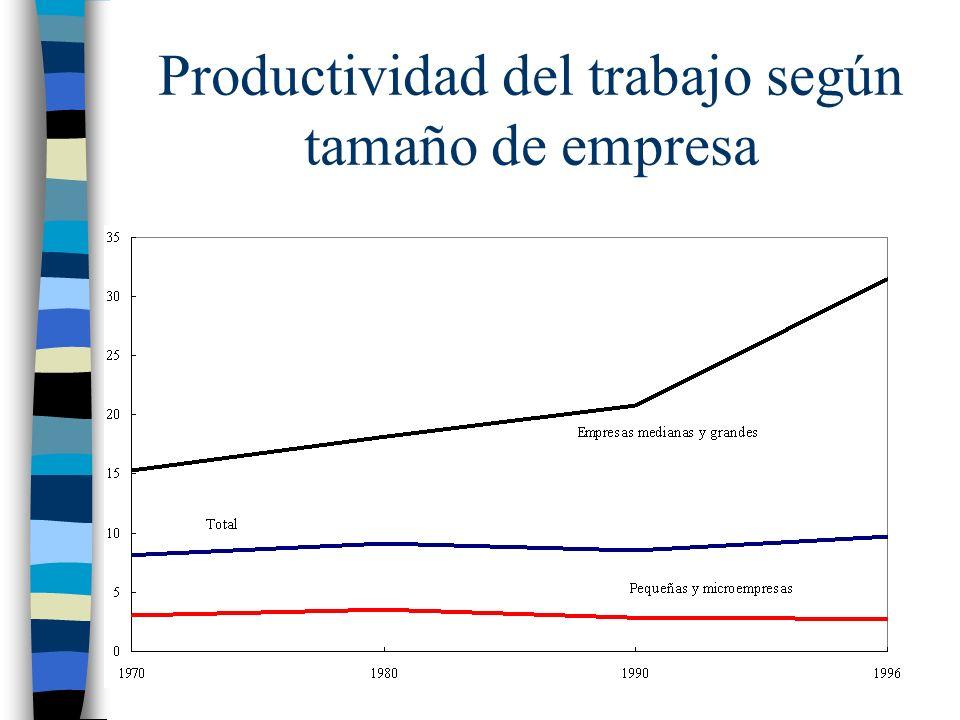 Productividad del trabajo según tamaño de empresa