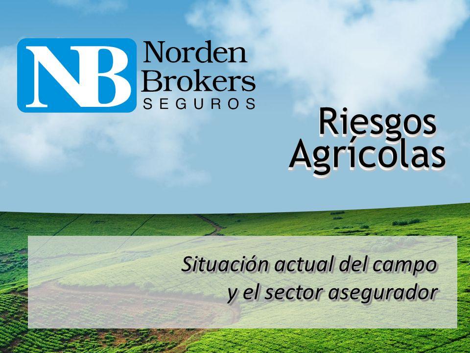 El Seguro Agrícola en Argentina Superficie asegurada (en millones de has) NOTA: NOTA: Se estima que la superficie asegurada en la campaña 2011/12 fue levemente inferior a la pasada debido a la sequía.