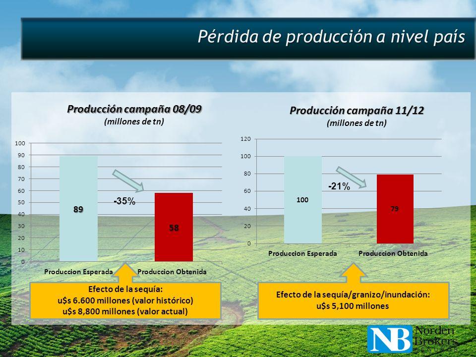 Pérdida de producción a nivel país Efecto de la sequía: u$s 6.600 millones (valor histórico) u$s 8,800 millones (valor actual) Efecto de la sequía/gra
