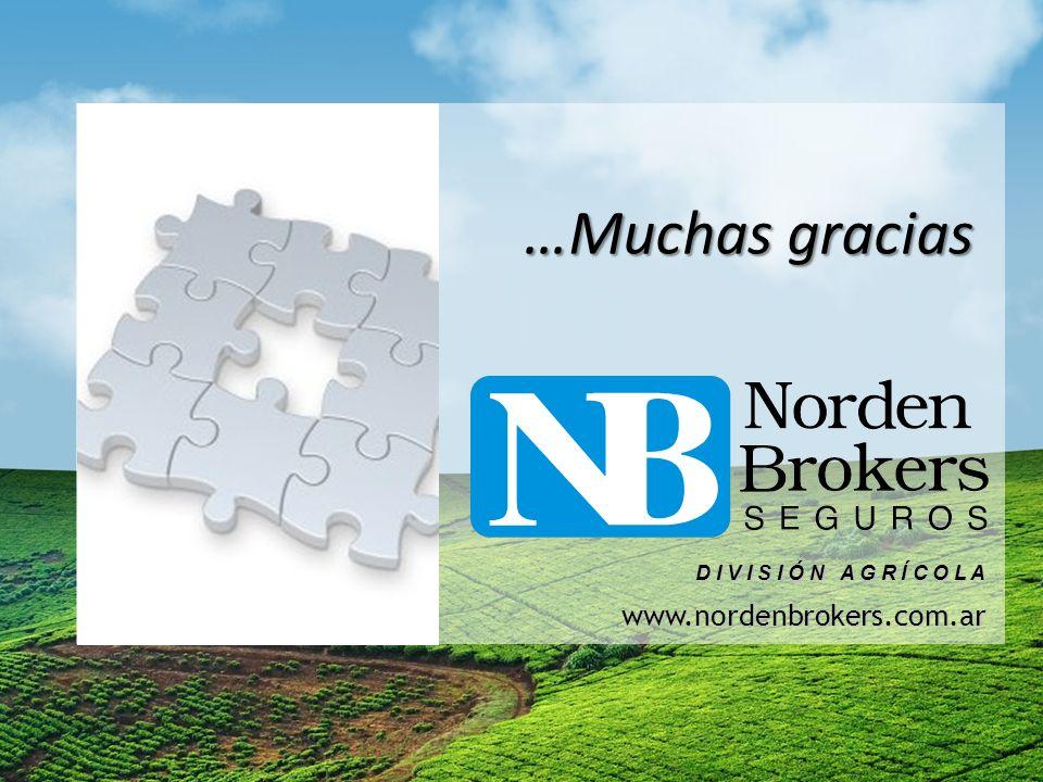 www.nordenbrokers.com.ar D I V I S I Ó N A G R Í C O L A …Muchas gracias