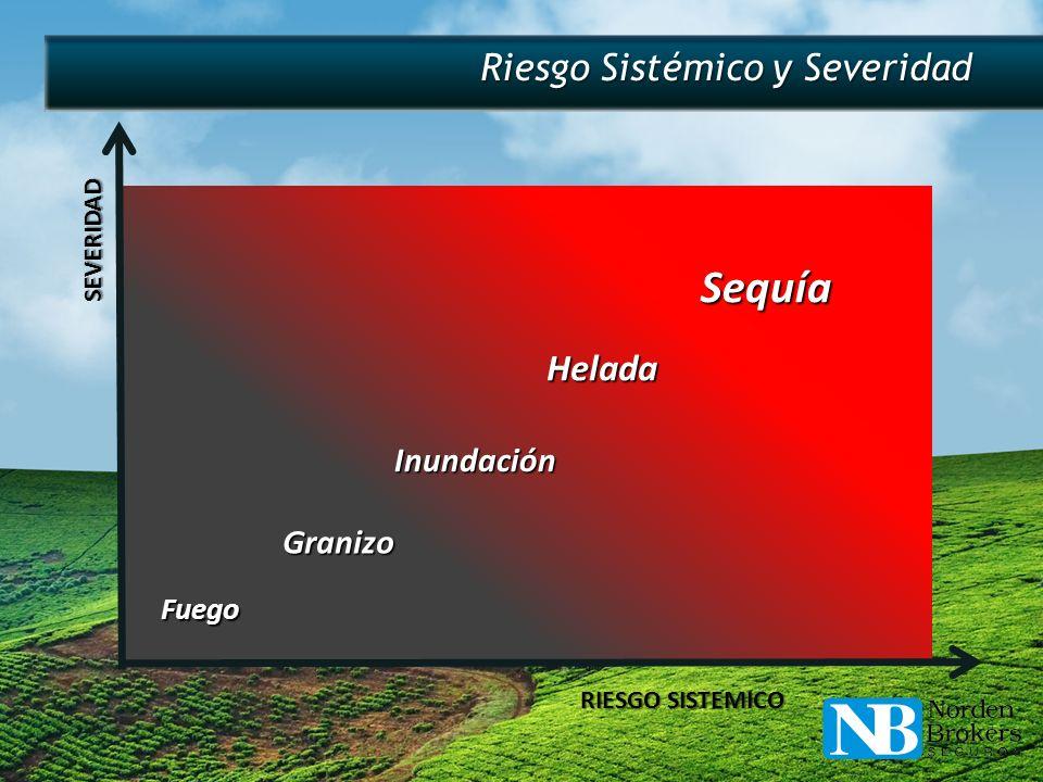 Fuego Granizo Inundación Helada Sequía Riesgo Sistémico y Severidad SEVERIDAD RIESGO SISTEMICO