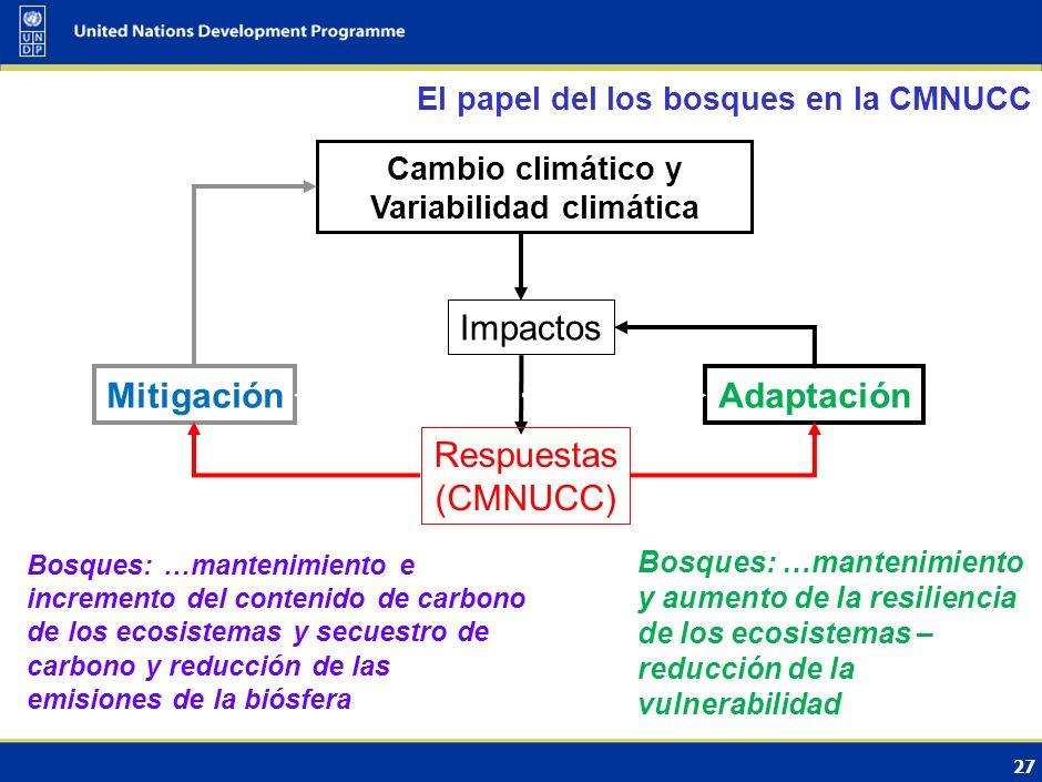 28 Sector clave para los países desarrollados por su potencial de mitigación Contencioso por las grandes incertidumbres Los países en desarrollo se centran fundamentalmente en los inventarios de GEI (datos, fuentes, capacidades) Principal paso en Marrakesh (2001) en el marco del Protocolo de Kyoto: Forestación y reforestación incluida en el MDL La reducción de las emisiones debidas a la deforestación y la degradación de los bosques (REDD) se vuelve un tema de la Convención Evolución de las negociaciones internacionales