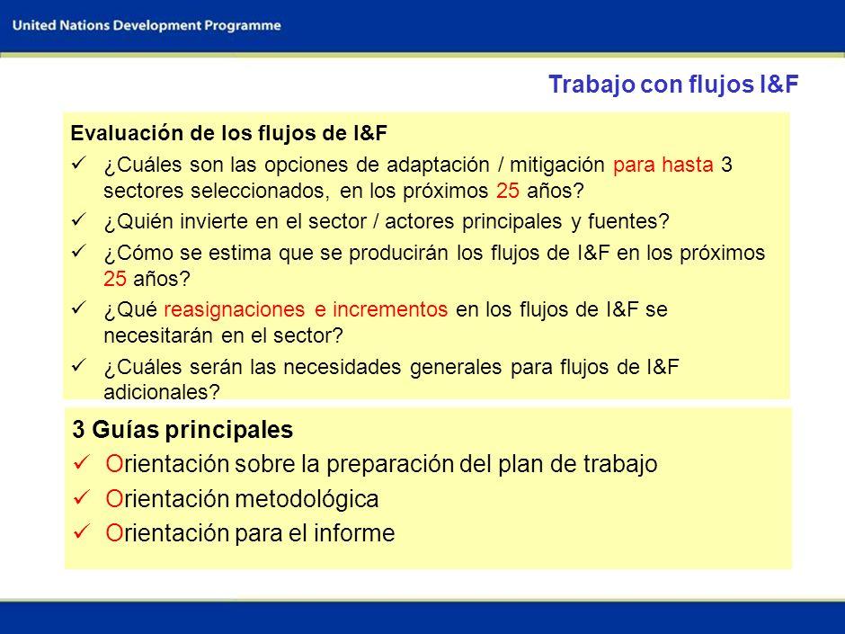 34 Definir los objetivos nacionales y las metas de la evaluación Identificar y acordar los sectores claves Establecer el equipo de trabajo Evaluar las capacidades metodológicas y las necesidades Evaluar la disponibilidad y las necesidades de información Lograr los acuerdos institucionales necesarios Elaborar el programa general de trabajo y el presupuesto Definir el alcance de los sectores Ajustar los escenarios disponibles y/o desarrollo de nuevos escenarios Elaborar un plan de trabajo detallado Elaborar el presupuesto definitivo Etapa preparatoria (1- 2 meses)