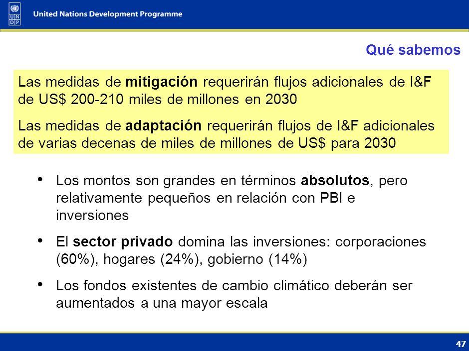 48 Fuentes financieras bajo la Convención y el Protocolo de Kyoto Fondo Fiduciario del FMAMMitigación, AdaptaciónMitigación: $3.3 bil.