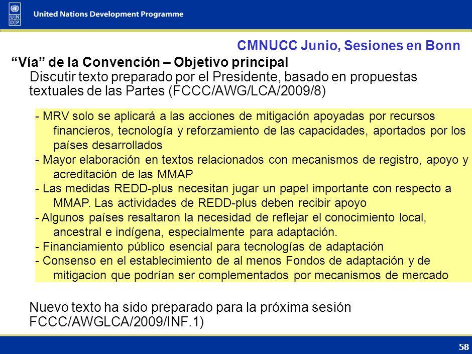 59 CMNUCC Junio, Sesiones en Bonn Vía del Protocolo – Objetivo principal Discutir los dos documentos preparados por el Presidente: Propuestas para enmendar el Protocolo de Kyoto, incluyendo anexo con propuestas textuales para enmendar el Anexo B del mismo (FCCC/KP/AWG/2009/7) Texto sobre Otros asuntos (FCCC/KP/AWG/2009/8) incluyendo el comercio de los derechos de emisión y mecanismos basados en proyectos; UTCUTS; otros GEI; sectores y categorías de fuentes; etc.
