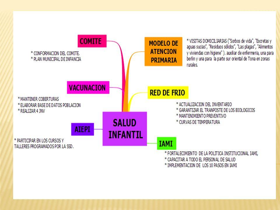 SALUD INFANTIL 19.000.000 NUTRICION 4.130.000 SALUD MENTAL 3.500.000 ENFERMEDADES TRANSMISILES 2.080.000 ENFERMEDADES NO TRANSMISIBLES 4.232.000 SALUD