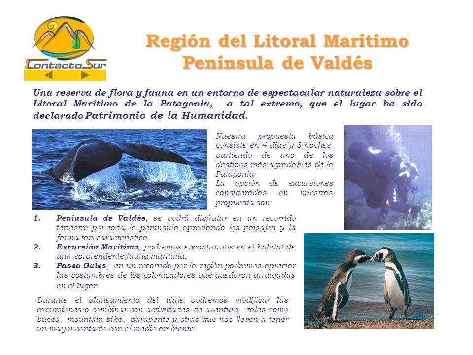 Región del Litoral Marítimo Península de Valdés Una reserva de flora y fauna en un entorno de espectacular naturaleza sobre el Litoral Marítimo de la Patagonia, a tal extremo, que el lugar ha sido declarado Patrimonio de la Humanidad.