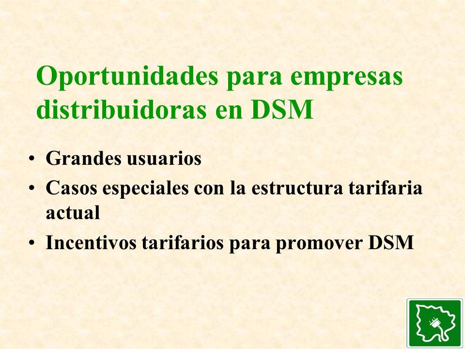 Oportunidades para empresas distribuidoras en DSM Grandes usuarios Casos especiales con la estructura tarifaria actual Incentivos tarifarios para prom