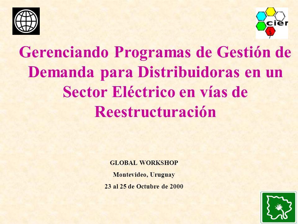 Gerenciando Programas de Gestión de Demanda para Distribuidoras en un Sector Eléctrico en vías de Reestructuración GLOBAL WORKSHOP Montevideo, Uruguay