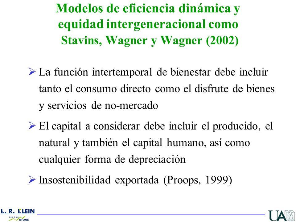 La función intertemporal de bienestar debe incluir tanto el consumo directo como el disfrute de bienes y servicios de no-mercado El capital a consider