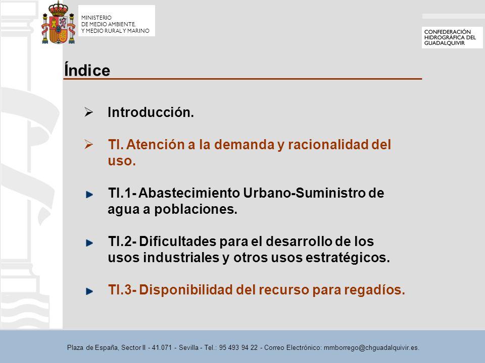 Plaza de España, Sector II - 41.071 - Sevilla - Tel.: 95 493 94 22 - Correo Electrónico: mmborrego@chguadalquivir.es. Índice Introducción. TI. Atenció