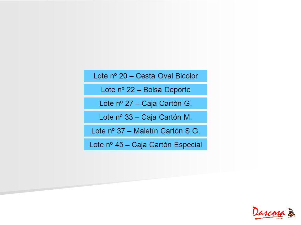Lote nº 20 – Cesta Oval Bicolor Lote nº 22 – Bolsa Deporte Lote nº 27 – Caja Cartón G. Lote nº 33 – Caja Cartón M. Lote nº 37 – Maletín Cartón S.G. Lo