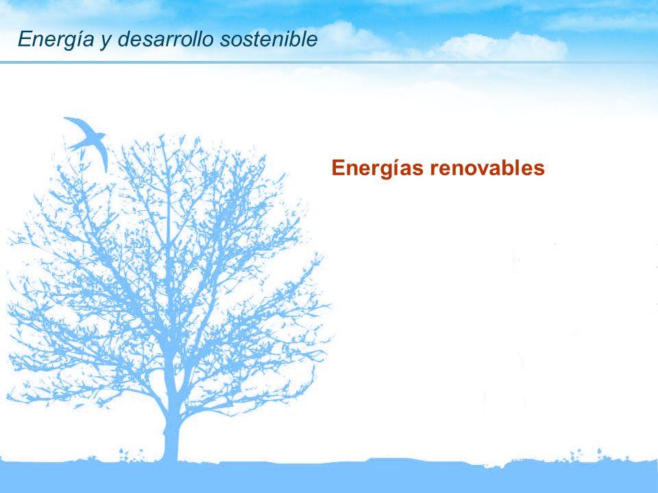 Energía y desarrollo sostenible Energías renovables