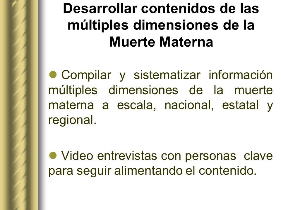 Desarrollar contenidos de las múltiples dimensiones de la Muerte Materna Compilar y sistematizar información múltiples dimensiones de la muerte matern