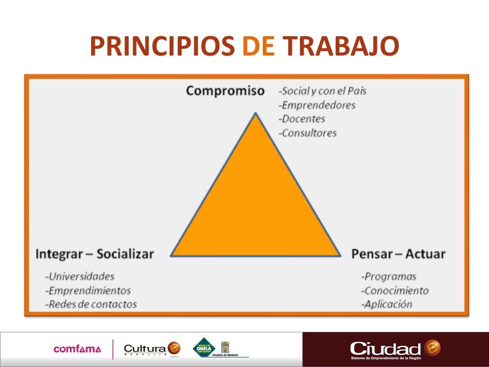 APRECIACIONES Y COMENTARIOS ¿Cómo les contribuye el programa en lo personal y profesional.