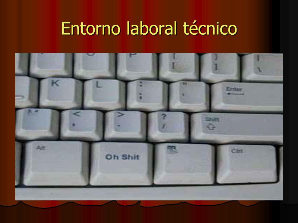 Entorno laboral técnico