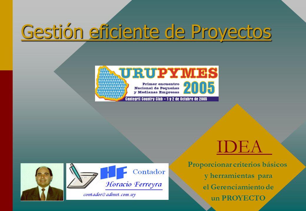 Gestión eficiente de Proyectos IDEA Proporcionar criterios básicos y herramientas para el Gerenciamiento de un PROYECTO