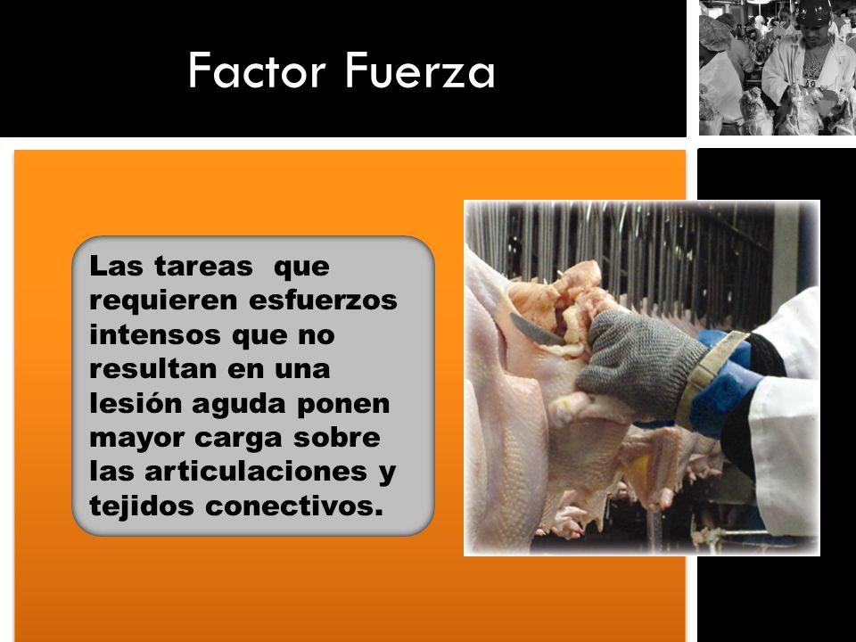 Factor Fuerza Las tareas que requieren esfuerzos intensos que no resultan en una lesión aguda ponen mayor carga sobre las articulaciones y tejidos con