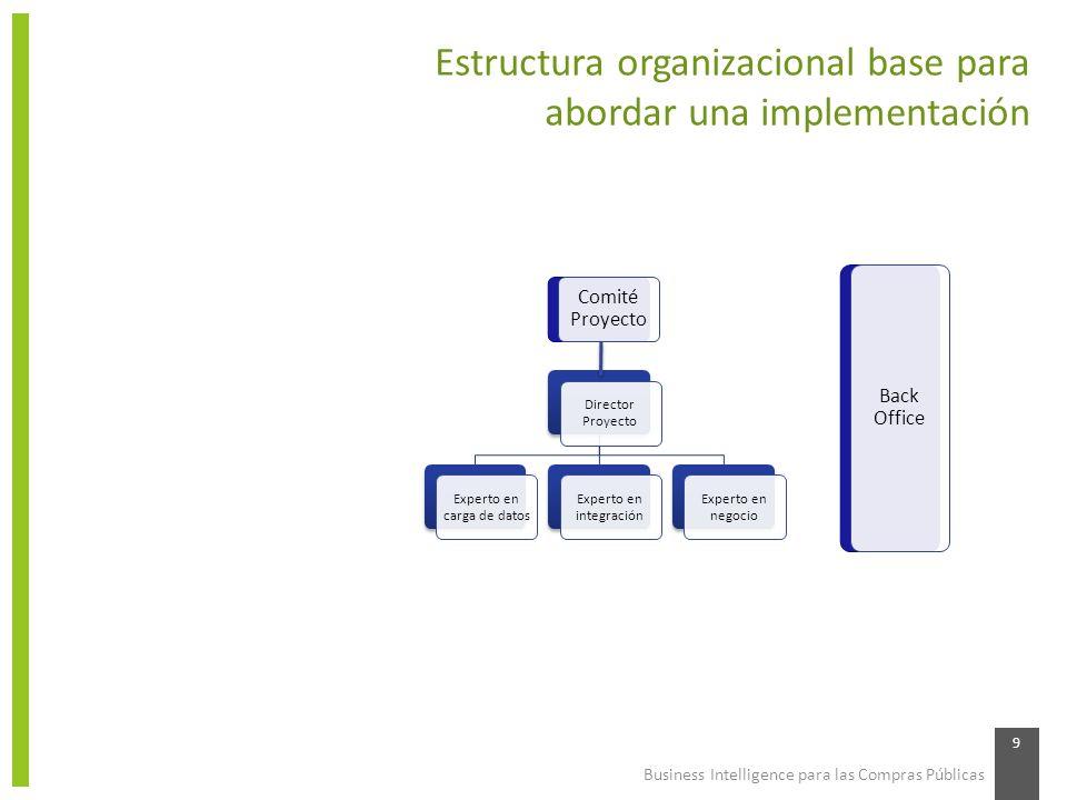 Business Intelligence para las Compras Públicas 9 Estructura organizacional base para abordar una implementación Director Proyecto Experto en carga de