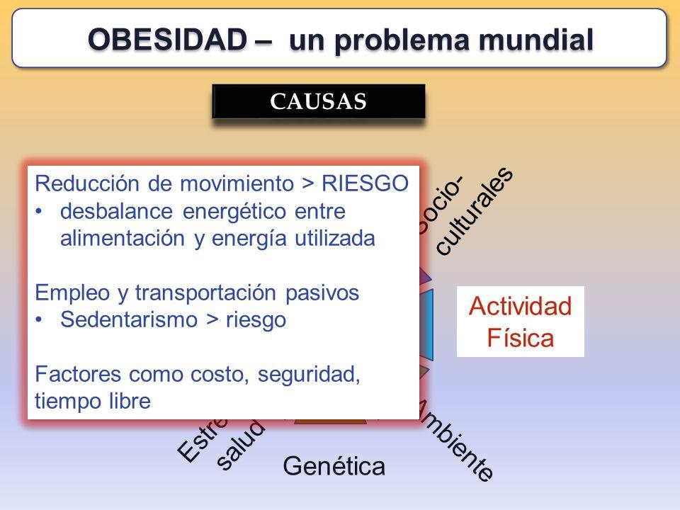 Estrés, salud CAUSAS Socio- culturales Genética Alimentación Recreación Actividad Física Toxinas Ambiente Reducción de movimiento > RIESGO desbalance
