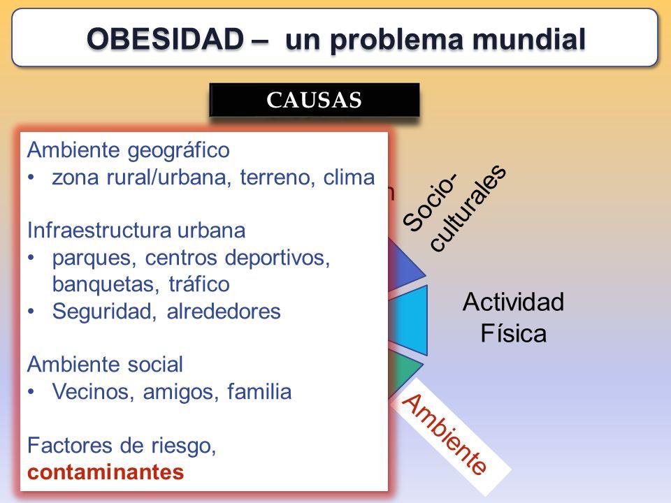 CAUSAS Socio- culturales Genética Alimentación Recreación Actividad Física Estrés Toxinas Ambiente Ambiente geográfico zona rural/urbana, terreno, cli