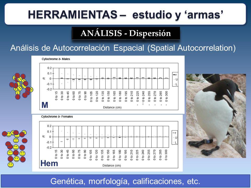 ANÁLISIS - Dispersión Análisis de Autocorrelación Espacial (Spatial Autocorrelation) Genética, morfología, calificaciones, etc. Hem M