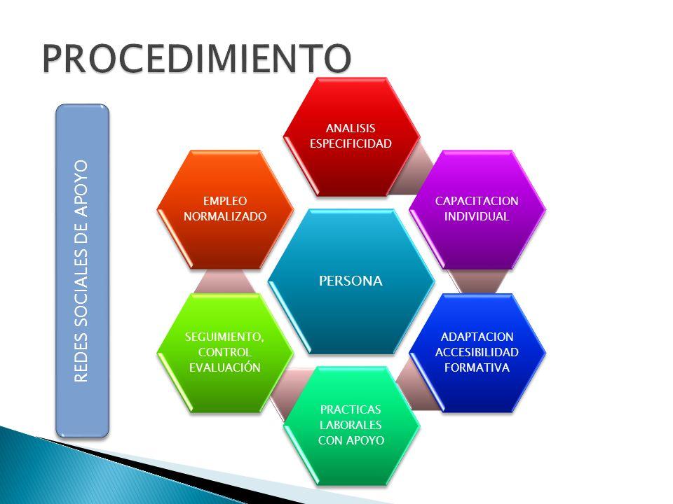 PERSONA ANALISIS ESPECIFICIDAD CAPACITACION INDIVIDUAL ADAPTACION ACCESIBILIDAD FORMATIVA PRACTICAS LABORALES CON APOYO SEGUIMIENTO, CONTROL EVALUACIÓ