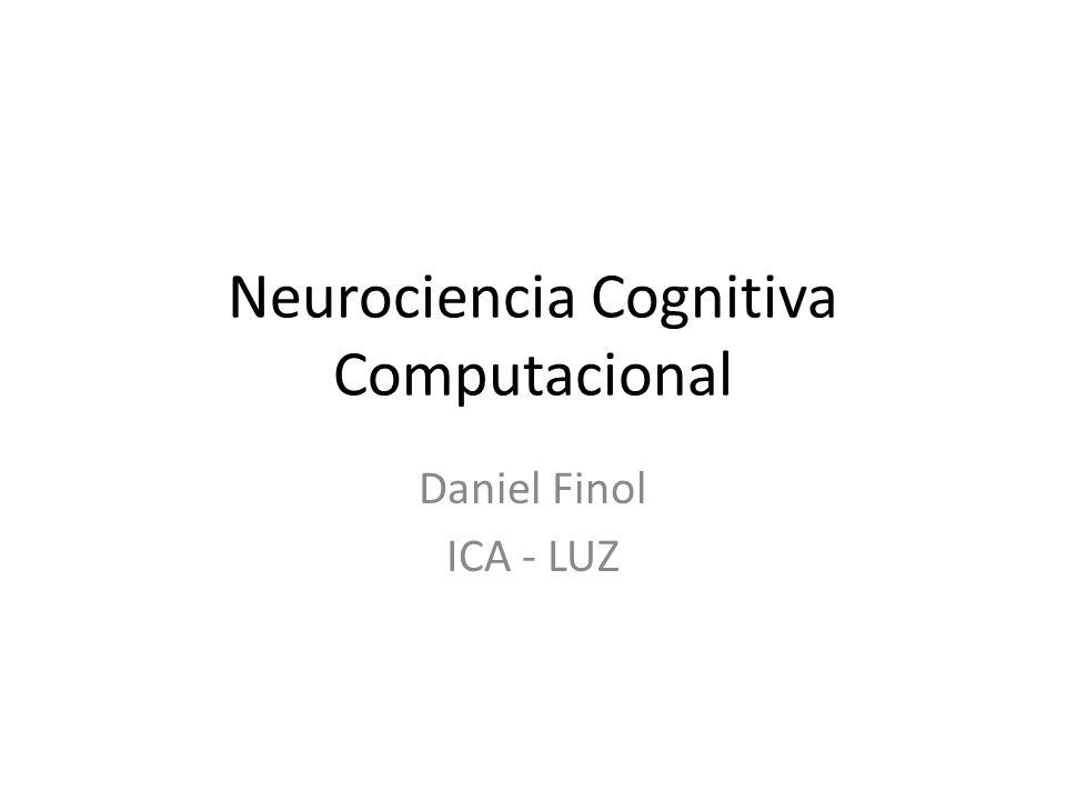 Neurociencia Cognitiva Computacional Daniel Finol ICA - LUZ