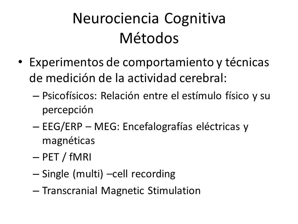Neurociencia Cognitiva Métodos Experimentos de comportamiento y técnicas de medición de la actividad cerebral: – Psicofísicos: Relación entre el estím