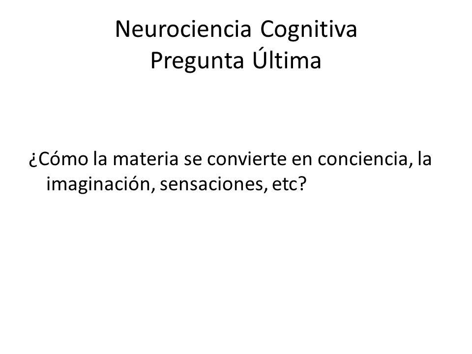 Neurociencia Cognitiva Pregunta Última ¿Cómo la materia se convierte en conciencia, la imaginación, sensaciones, etc?
