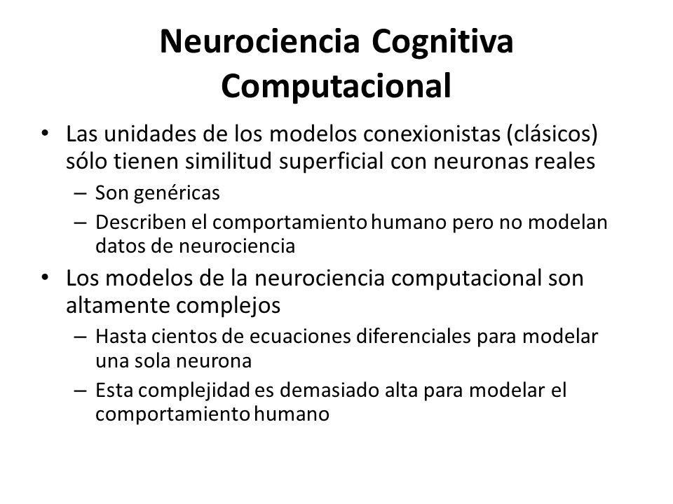 Neurociencia Cognitiva Computacional Las unidades de los modelos conexionistas (clásicos) sólo tienen similitud superficial con neuronas reales – Son