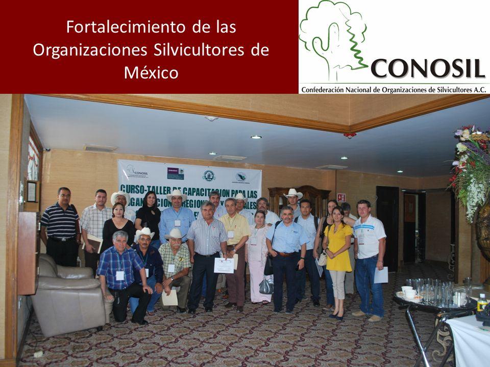 Fortalecimiento de las Organizaciones Silvicultores de México