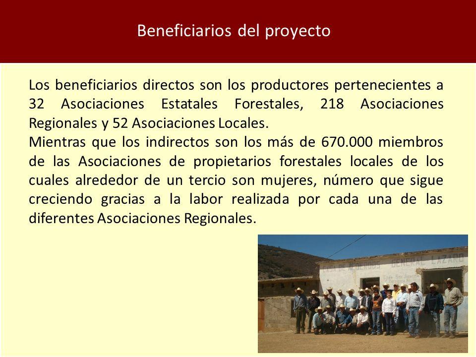 Beneficiarios del proyecto Los beneficiarios directos son los productores pertenecientes a 32 Asociaciones Estatales Forestales, 218 Asociaciones Regionales y 52 Asociaciones Locales.