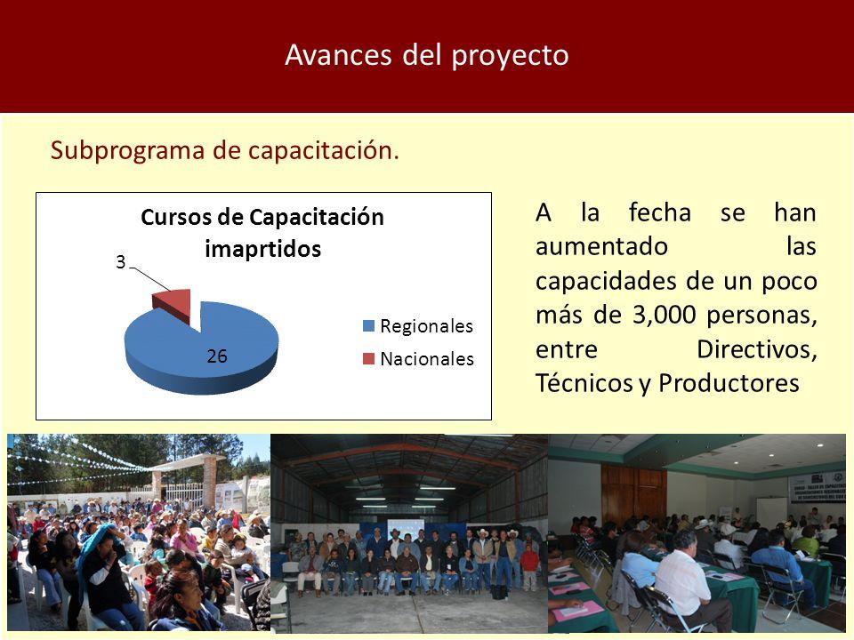 Avances del proyecto Subprograma de capacitación.