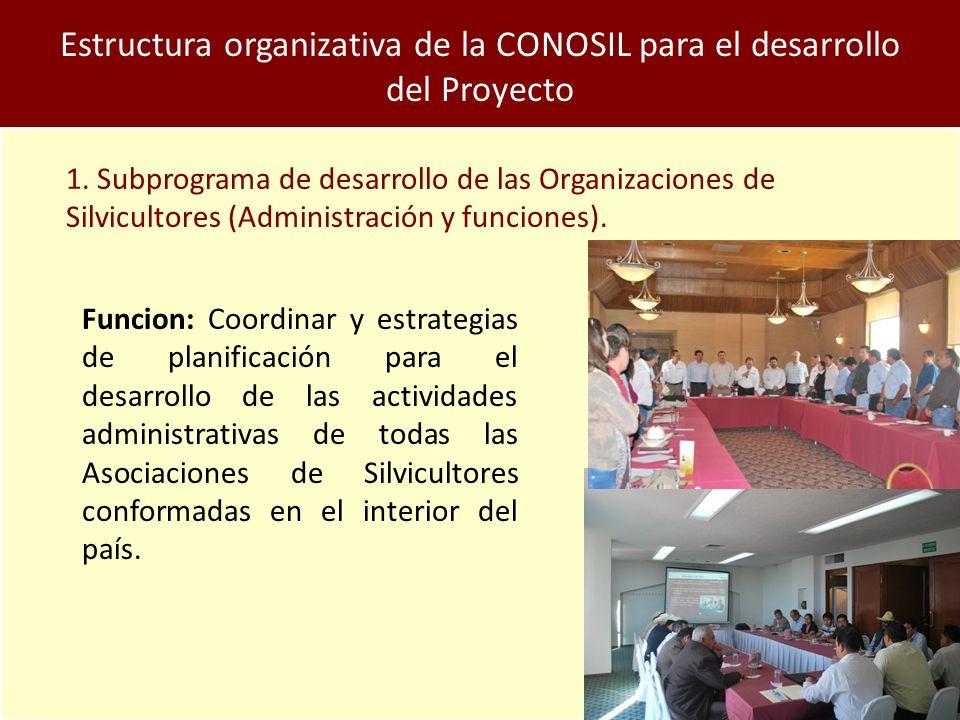 Estructura organizativa de la CONOSIL para el desarrollo del Proyecto 1.